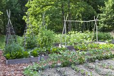 Can't wait for planting my vegetable garden this spring.