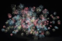 Ecco come imparare a fotografare i fuochi d'artificio!
