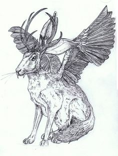 Wolpertinger- Bavarian folklore: a strange chimerical creature said to inhabit the alpine forests of Germany. Its said to have the body of a rabbit, wings, antlers, and fangs.