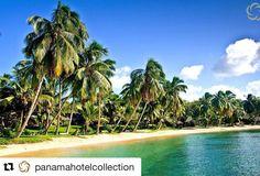#Repost @panamahotelcollection  Craving for Caribbean? Courtesy of Gran Hotel Bahia!  Ansiando Caribe? Cortesía de Gran Hotel Bahia!  For more info: info@panamahotelcollection.com #GranHotelBahia #bocasdeltoro #panamahotelcollection #phc #vistpanama #vacactioninpanama #panamahotels #vacation2016  #caribbeansea #caribe #mar