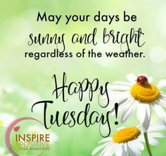 Tuesday Morning Quotes Happy Tuesday Happy Tuesday Quotes  Quotes  Pinterest  Happy .
