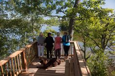 Whether you're hiking in time for spring blooms or the changing of the fall leaves, keep this list handy to help guide your Hamilton trails adventure.