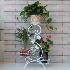 Asian Arts Wrought Iron Metal Plant Pot Stand French Inspiration Of Indoor asian Plants. Balcony Flowers, Indoor Flowers, Indoor Plants, Indoor Outdoor, Tiered Plant Stand Indoor, Metal Plant Stand, Plant Stands, House Plants Decor, Plant Decor