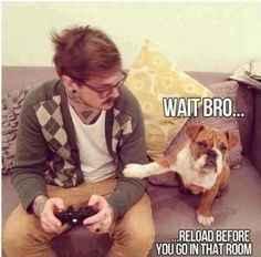 dog gamer, nothing better