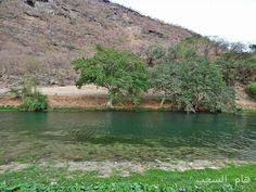 Wadi Derbat -Dhofar -Oman Salalah, Royal Engineers, Pretty Pictures, Scenery, Coast, Around The Worlds, Birds, River, Places