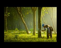 worker cutting tree to harvest the sap Natural Latex, Natural Rubber, Tree Story, Rubber Tree, East Indies, Photo Tree, Click Photo, Drawing People