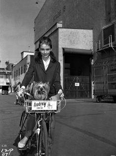 Audrey Hepburn?