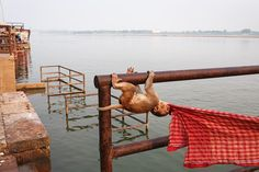 Varanasi, India   NOVAPLANET