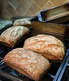 red fife bread recipe. a long process, but hopefully worth it!