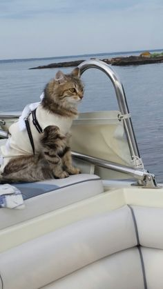 1st. Boatride.