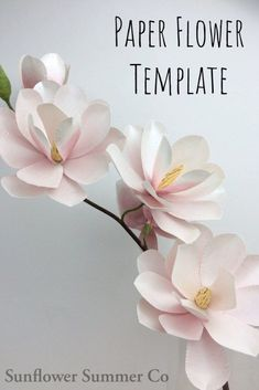 diy paper flower template, magnolia paper flower Magnolias symbolize beauty and gentleness. Make this magnolia paper flower for a special woman in your life that you think is beautiful and gentle. Large Paper Flowers, Tissue Paper Flowers, Paper Flower Backdrop, How To Make Flowers Out Of Paper, Paper Origami Flowers, Paper Flower Centerpieces, Rolled Paper Flowers, Paper Flower Decor, Paper Butterflies