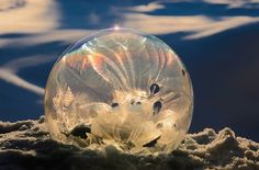 Frozen Bubble Ice Crystals – Fubiz™