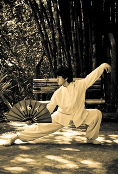 Tai Chi Fan: the snake posture Kung Fu Martial Arts, Chinese Martial Arts, Qi Gong, Aikido, Pranayama, Tai Chi Movements, American Born Chinese, Tai Chi Moves, Learn Tai Chi