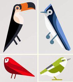 Josh-brill-birds