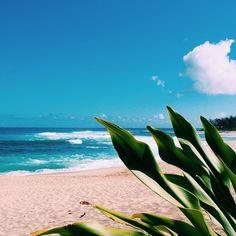 hawaiianseasides
