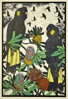 Yellow-tailed black Cockatoo & Banksia 75.5 x 50.5 cm - Hand coloured linocut on handmade Japanese paper  by Rachel Newling