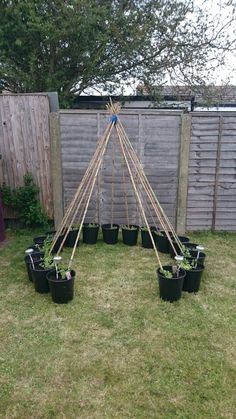 Sweet Pea Wigwam :: perfect option for the kids play area green bean tent!