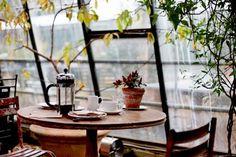 cozy coffee shops