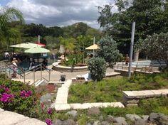 Coamo Thermal Hot Springs, Puerto Rico: See 24 reviews, articles, and 6 photos of Coamo Thermal Hot Springs, ranked No.237 on TripAdvisor among 498 attractions in Puerto Rico.
