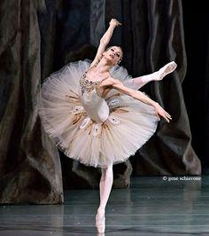 A Ballet Blog | via Tumblr