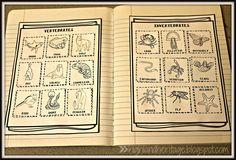 Free cut-and-paste vertebrates/invertebrates sort for interactive science notebooks.  18 animals to sort!