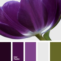 """This palette is for girls whose colour type is """"Autumn"""". Such a rich shades of purple will shade your hair and eyes nicely. Also these colours are very pra."""