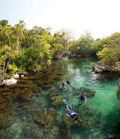 Yucatán, México. Xel-Há no solo es un parque acuático, son recuerdos latentes de un lugar maravilloso.