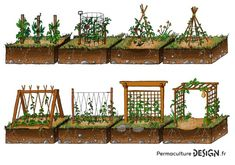 Examples of stakes for climbing plants in a permaculture vegetable garden, te . Permaculture Design, Plan Potager Permaculture, Permaculture Principles, Back Garden Design, Vegetable Garden Design, Vegetable Gardening, Kitchen Gardening, Bird Bath Garden, Garden Art