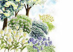 Haaveiletko läpi kesän tuoksuvasta puutarhasta? Kasvien tuoksut ovat oleellinen osa puutarhan ohikiitävää ihanuutta. Tutustu Viherpihan istutussuunnitelmaan.