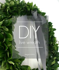 Make your home a festive space with a DIY live wreath.