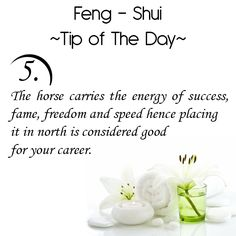 Feng Shui Tip of the Day: The horse carries the energy of success, fame, freedom, and speed hence placing it in North is considered good for your career. Get the Vastu experts advice for your home from renowned Vastu Expert Ms. Feng Shui Tools, Feng Shui Guide, Feng Shui House, Feng Shui Bedroom, Chakra Meditation, Chakra Healing, Feng Shui Health, Diy Organisation, Bedroom Quotes
