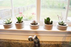 Another nice, very detailed tutorial on making succulent planters.