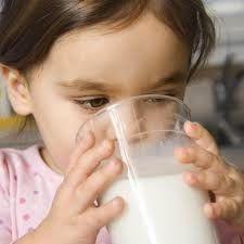 Armario de Noticias: La función de la lactosa en el organismo