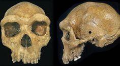 L'enigma dell'uomo preistorico ucciso da un proiettile