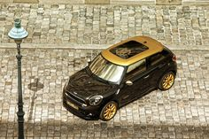Passion For Luxury : Roberto Cavalli-Designed MINI Paceman Like this.