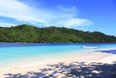 Kelapa Island