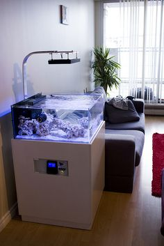 TheDoogan's shallow rimless tank. - Reef Central Online Community - love the cove for controllers...