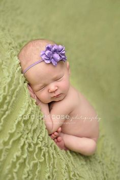 Buy Now Baby Headbands - You Pick 1 Infant Headband - Hairbow Headbands - Baby Hair Accessories - Baby Hairbow - Baby Bows - Newborn by Pinkpaisleybowtique. Newborn Headbands, Baby Girl Headbands, Baby Bows, Newborn Pictures, Baby Pictures, Baby Photos, Aqua Coral, Purple, Lilac