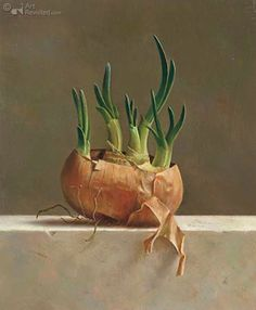 'Uienbakje','Onion Container' - by Marius van Dokkum | Oil on  panel - 2004 | Kunstwerken - Art Revisited