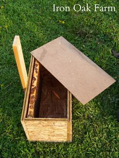 How to build a swarm box. Step by step instructions for building a swarm box used to catch wild swarms. Drone Bee, Top Bar Hive, Bee Hive Plans, Wild Bees, Bee Swarm, Raising Bees, Beekeeping Equipment, Bee Boxes, Backyard Beekeeping