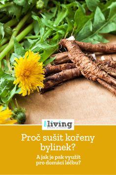 Korn, Green Beans, Vegetables, Fitness, Vegetable Recipes, Veggies