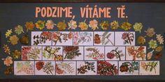 2. třída - jeřabinky a javorový list Advent Calendar, Holiday Decor, Crafts, Manualidades, Advent Calenders, Handmade Crafts, Craft, Arts And Crafts, Artesanato
