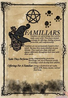 lavendulamoon — My familiar came to me at my most weak moment, she. Witch Spell Book, Witchcraft Spell Books, Magick Spells, Witchcraft Spells For Beginners, Green Witchcraft, Pagan Witchcraft, Healing Spells, Wiccan Magic, Wiccan Witch