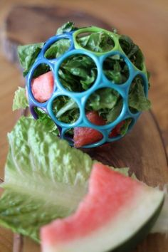 Treats for Chicken! -The Buzz on Enrichment #DIYchickencoopplans