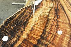 Cutting Koa ~ Hearne Hardwoods Inc.