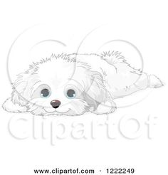 70 best images about Dog/cat faces/cliparts for wedding on