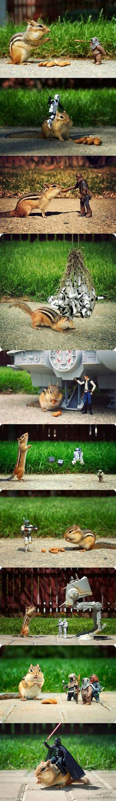 The Force is strong with this chipmunk.