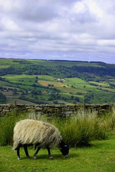 The Dales, Yorkshire, England