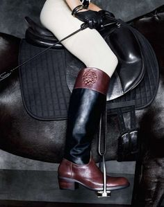 leathery hard core rider prep //// Soyouthinkyoucansee her  Horse & Power  (detail)