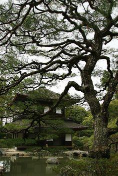 yuikki:  Ginkakuji Image by MacHsin on Flickr.